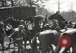 Image of 1st Cavalry Division Fort Oglethorpe Georgia USA, 1942, second 46 stock footage video 65675063111