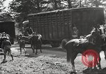 Image of 1st Cavalry Division Fort Oglethorpe Georgia USA, 1942, second 50 stock footage video 65675063111