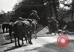 Image of 1st Cavalry Division Fort Oglethorpe Georgia USA, 1942, second 61 stock footage video 65675063111