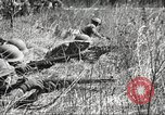 Image of 1st Cavalry Division Fort Oglethorpe Georgia USA, 1942, second 8 stock footage video 65675063112