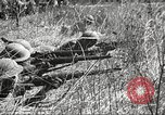 Image of 1st Cavalry Division Fort Oglethorpe Georgia USA, 1942, second 16 stock footage video 65675063112