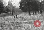 Image of 1st Cavalry Division Fort Oglethorpe Georgia USA, 1942, second 38 stock footage video 65675063112