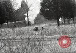 Image of 1st Cavalry Division Fort Oglethorpe Georgia USA, 1942, second 47 stock footage video 65675063112