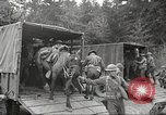 Image of 1st Cavalry Division Salem Oregon USA, 1942, second 30 stock footage video 65675063115