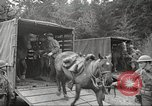 Image of 1st Cavalry Division Salem Oregon USA, 1942, second 31 stock footage video 65675063115