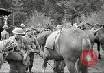 Image of 1st Cavalry Division Salem Oregon USA, 1942, second 39 stock footage video 65675063115