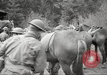 Image of 1st Cavalry Division Salem Oregon USA, 1942, second 40 stock footage video 65675063115