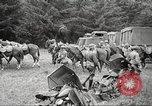Image of 1st Cavalry Division Salem Oregon USA, 1942, second 49 stock footage video 65675063115