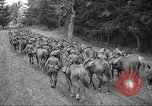 Image of 1st Cavalry Division Salem Oregon USA, 1942, second 60 stock footage video 65675063115