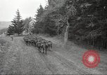 Image of 1st Cavalry Division Salem Oregon USA, 1942, second 62 stock footage video 65675063115