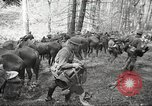 Image of 1st Cavalry Division Salem Oregon USA, 1942, second 3 stock footage video 65675063116