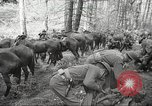 Image of 1st Cavalry Division Salem Oregon USA, 1942, second 9 stock footage video 65675063116