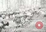 Image of 1st Cavalry Division Salem Oregon USA, 1942, second 10 stock footage video 65675063116
