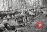 Image of 1st Cavalry Division Salem Oregon USA, 1942, second 11 stock footage video 65675063116