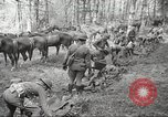 Image of 1st Cavalry Division Salem Oregon USA, 1942, second 12 stock footage video 65675063116