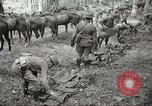 Image of 1st Cavalry Division Salem Oregon USA, 1942, second 13 stock footage video 65675063116