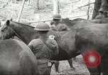 Image of 1st Cavalry Division Salem Oregon USA, 1942, second 19 stock footage video 65675063116