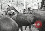 Image of 1st Cavalry Division Salem Oregon USA, 1942, second 20 stock footage video 65675063116