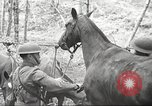Image of 1st Cavalry Division Salem Oregon USA, 1942, second 22 stock footage video 65675063116