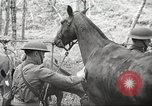 Image of 1st Cavalry Division Salem Oregon USA, 1942, second 23 stock footage video 65675063116