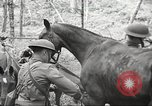 Image of 1st Cavalry Division Salem Oregon USA, 1942, second 24 stock footage video 65675063116