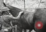 Image of 1st Cavalry Division Salem Oregon USA, 1942, second 27 stock footage video 65675063116