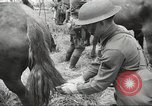Image of 1st Cavalry Division Salem Oregon USA, 1942, second 29 stock footage video 65675063116