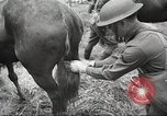 Image of 1st Cavalry Division Salem Oregon USA, 1942, second 36 stock footage video 65675063116