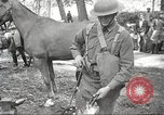 Image of 1st Cavalry Division Salem Oregon USA, 1942, second 37 stock footage video 65675063116