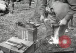 Image of 1st Cavalry Division Salem Oregon USA, 1942, second 48 stock footage video 65675063116