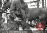 Image of 1st Cavalry Division Salem Oregon USA, 1942, second 53 stock footage video 65675063116