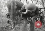 Image of 1st Cavalry Division Salem Oregon USA, 1942, second 54 stock footage video 65675063116