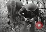 Image of 1st Cavalry Division Salem Oregon USA, 1942, second 55 stock footage video 65675063116