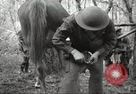 Image of 1st Cavalry Division Salem Oregon USA, 1942, second 56 stock footage video 65675063116