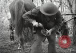 Image of 1st Cavalry Division Salem Oregon USA, 1942, second 60 stock footage video 65675063116