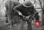 Image of 1st Cavalry Division Salem Oregon USA, 1942, second 61 stock footage video 65675063116