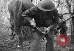 Image of 1st Cavalry Division Salem Oregon USA, 1942, second 62 stock footage video 65675063116