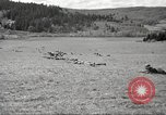 Image of 1st Cavalry Division Salem Oregon USA, 1942, second 15 stock footage video 65675063118