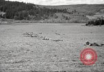 Image of 1st Cavalry Division Salem Oregon USA, 1942, second 17 stock footage video 65675063118