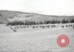 Image of 1st Cavalry Division Salem Oregon USA, 1942, second 45 stock footage video 65675063118