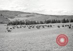Image of 1st Cavalry Division Salem Oregon USA, 1942, second 46 stock footage video 65675063118