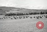 Image of 1st Cavalry Division Salem Oregon USA, 1942, second 48 stock footage video 65675063118