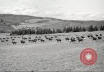 Image of 1st Cavalry Division Salem Oregon USA, 1942, second 49 stock footage video 65675063118
