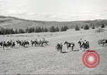 Image of 1st Cavalry Division Salem Oregon USA, 1942, second 55 stock footage video 65675063118