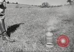 Image of 1st Cavalry Division Salem Oregon USA, 1942, second 3 stock footage video 65675063119