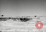 Image of 1st Cavalry Division United States USA, 1942, second 2 stock footage video 65675063120