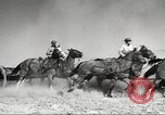 Image of 1st Cavalry Division United States USA, 1942, second 15 stock footage video 65675063120