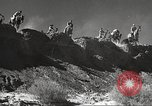 Image of 1st Cavalry Division United States USA, 1942, second 35 stock footage video 65675063120