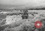 Image of 1st Cavalry Division United States USA, 1942, second 52 stock footage video 65675063121