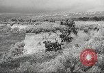 Image of 1st Cavalry Division United States USA, 1942, second 53 stock footage video 65675063121